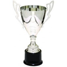Silver Completed Metal Cup